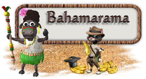 bahama banner