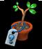mysterious_tree.jpg1_